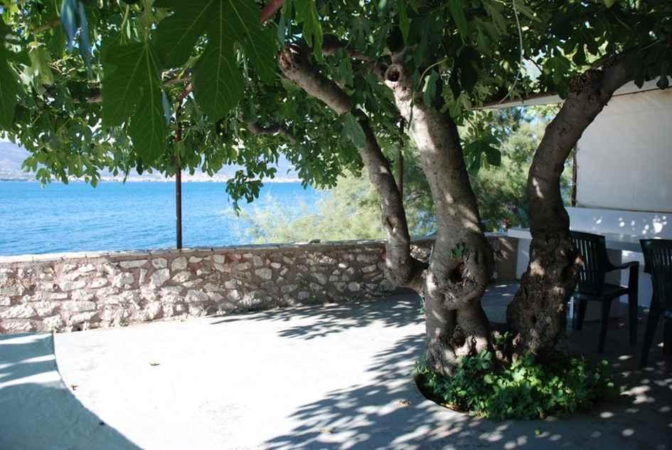 Haus kaufen in Kroatien Häuser Villen Meer
